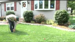 Lawn Aeration and Overseeding [Lawn Care Tips]