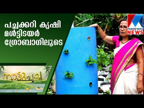 Vegetable farming with Multi Tair Grow bag | Nattupacha | Manorama News