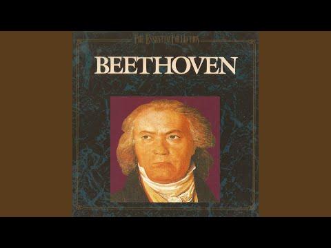 Piano Sonata No. 14 in C-Sharp Minor, Op. 27 'Moonlight Sonata': II. Allegretto