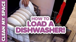 How to Load A Dishwasher! (Clean My Space)