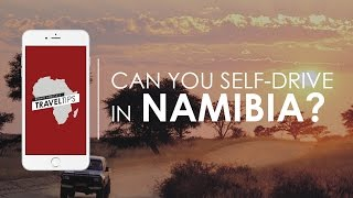 Can you self-drive in Namibia? Rhino Africa