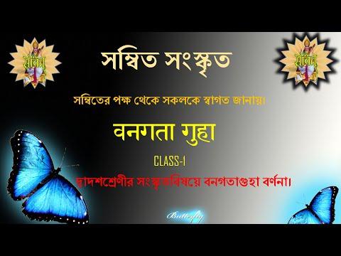 বনগতা গুহা, Class-1. Class-12 Sanskrit
