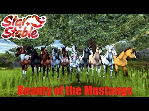 SSO ~ Beauty of the Mustangs