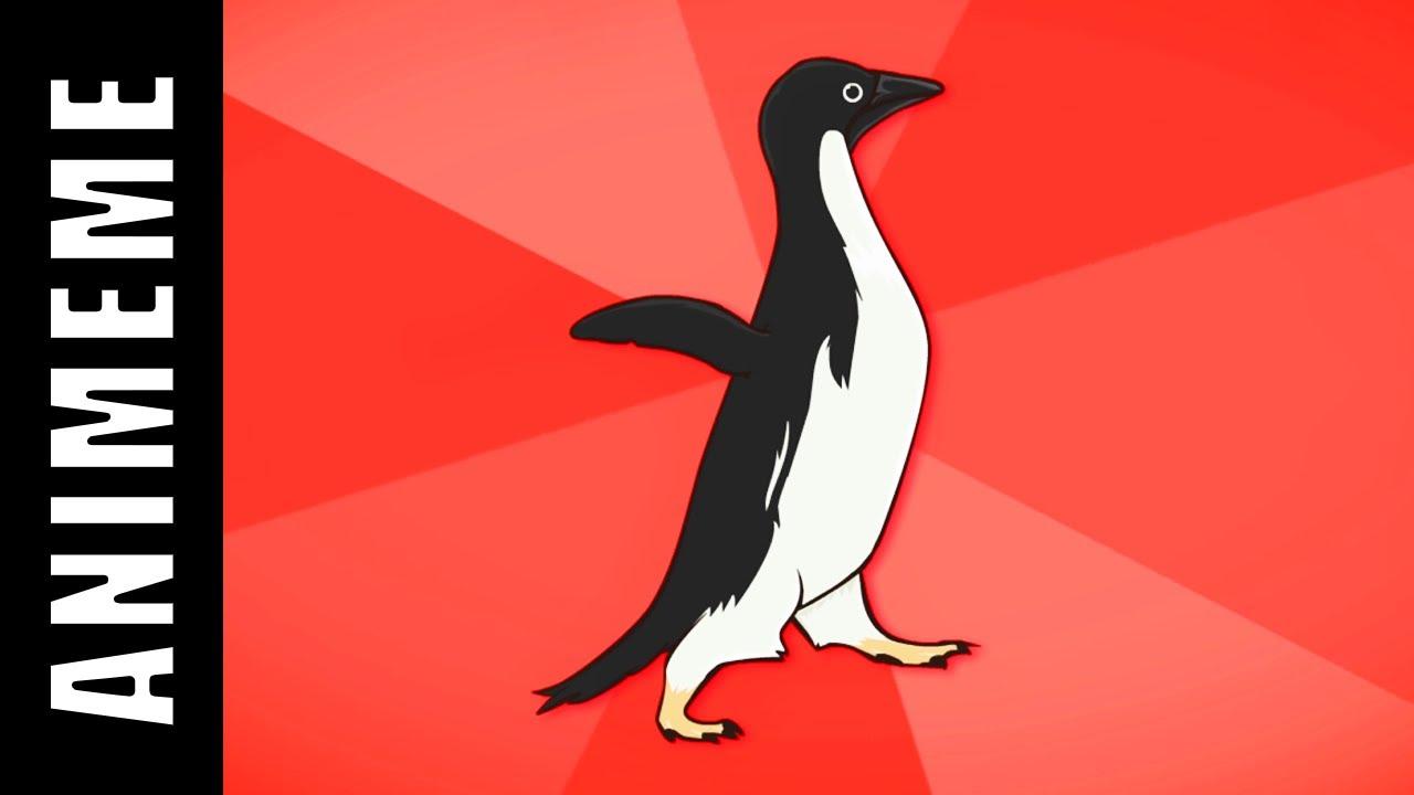 Socially Awesome Penguin Vs Socially Awkward Penguin