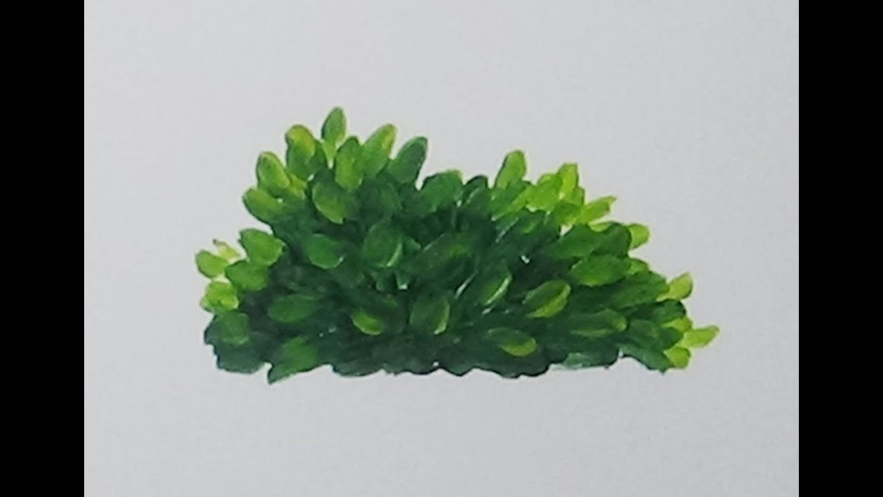 How To Paint A Leafy Bush With Acrylics Easy Painting