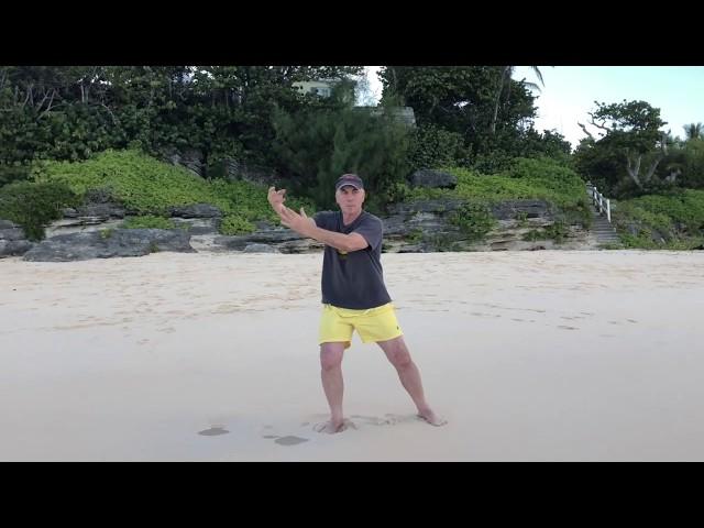 Taiji on the Beach