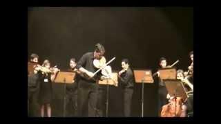 J C Bach - Viola Concerto in C minor - Allegro molto ma Maestoso - Gabriel Marin, Viola