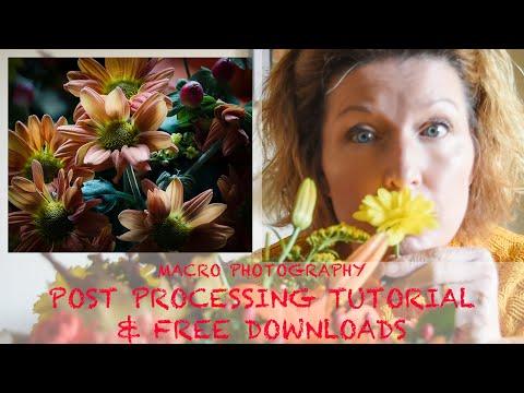 FREE RAW IMAGE DOWNLOAD & PHOTOSHOP TUTORIAL thumbnail