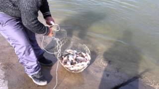 Рыбалка Сырдарья Баиркум 17,03,2012