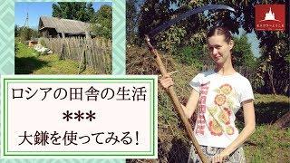 ロシアの田舎・大鎌を使ってみます!
