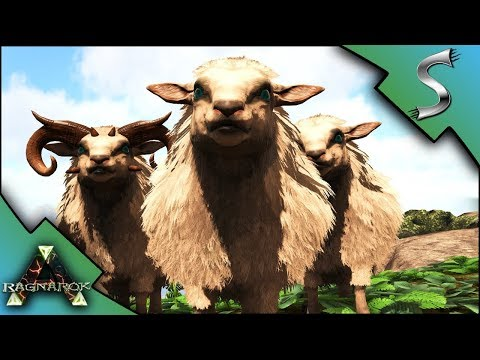 OVIS TAMING AND MUTTON SLAUGHTER HOUSE FARM! - Ark: RAGNAROK [DLC Gameplay E58]