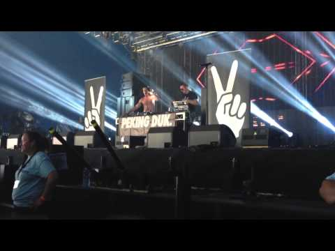 Peking Duk live at Big Day Out