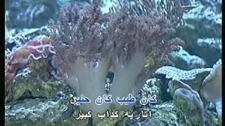 Kan Tayeb (Amr Diab) karaoke