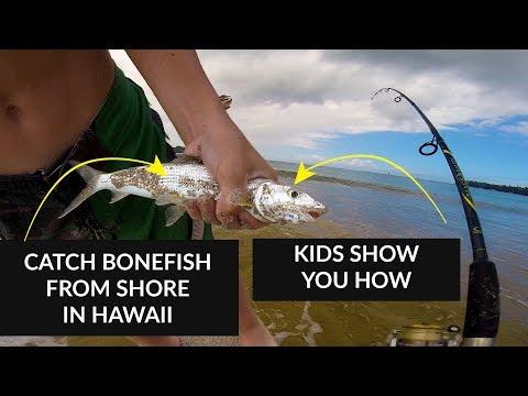 HOW To CATCH BONEFISH In Hawaii From Shore - SURF FISHING - KIDS Fishing VIDEO