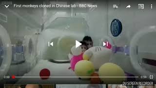 First Monkeys cloned in Chinese lab