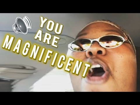 You Are Magnificent - Songify This!