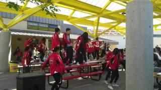 whs dance team flash mob