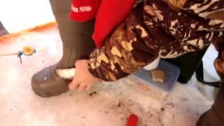 Рыбалка на Озернинском водохранилище: какая рыба водится ...