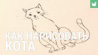 Как нарисовать кота(, 2015-12-11T14:00:02.000Z)