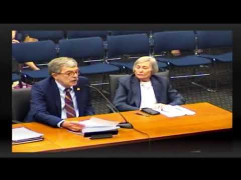 House Revenue & Finance Committee: Madigan's progressive tax resolution