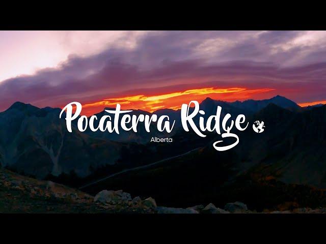 Pocaterra Ridge, une crête panoramique à 360° dans les rocheuses en Alberta | C'est Notre Monde
