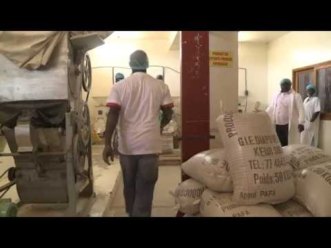Senegal: Eat What You Grow