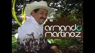 Armando Martinez - La tristeza del coleador / El pimpollito