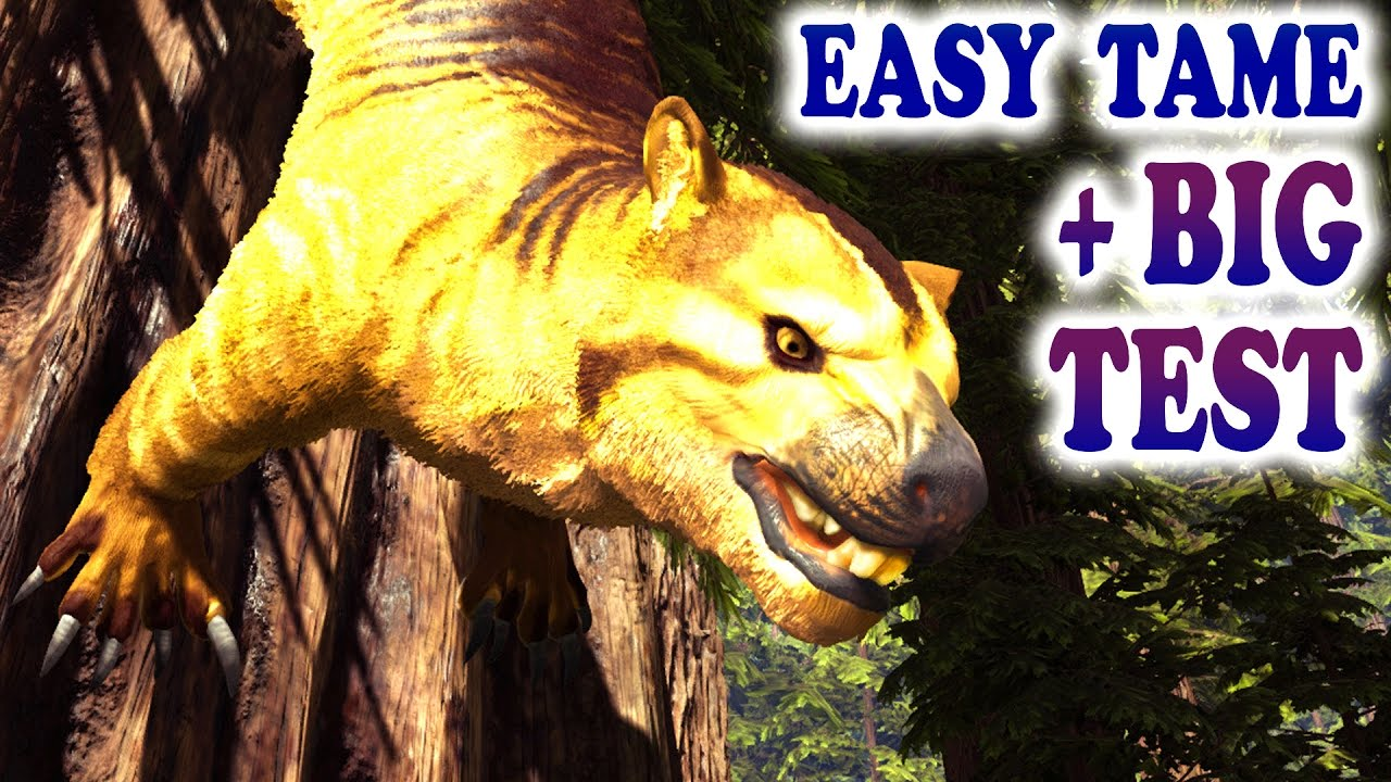 Ark How To Tame A Thylacoleo Big Thylacoleo Test Ark Survival