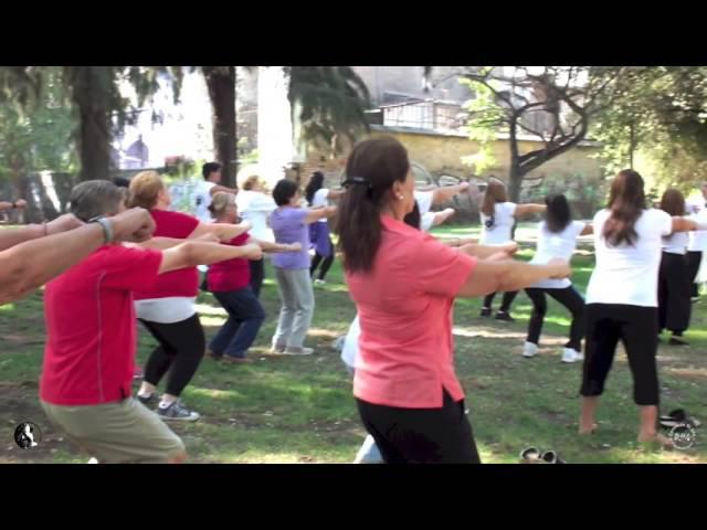 Chi Kung en el Parque Quinta Normal, Sa?bado 5 de Marzo 2016