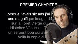 Le Petit Prince Chapitre I フランス語を読む練習のため。 Chapitre I : https://youtu.be/h4OVOr97fB8 Chapitre II : https://youtu.be/8IOEoEkjkfE Chapitre III ...