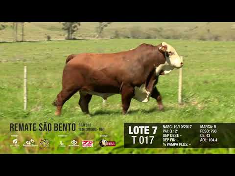 LOTE 07 T 017