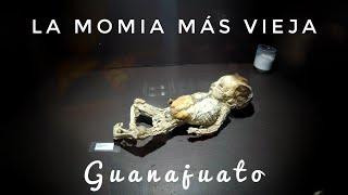 Momias de GUANAJUATO ✦ terroríficas historias de los callejones