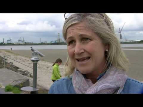 Dublin divided over Brexit   BBC News