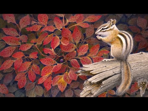 Creating a Wildlife Painting