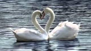 Listen to My Heart Maureen Christine, composer David Friedman