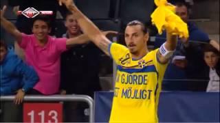 Zlatan Ibrahimović ist Schwedens Rekordtorschütze