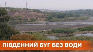 В Южном Буге исчезла вода, река обмелела. Люди обвиняют в инциденте местную ГЭС