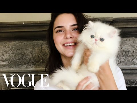 Kendall Jenner Meets the World's Cutest Kitten | Vogue