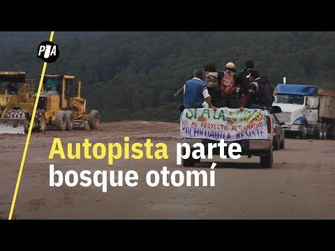 Esta comunidad otomí defiende el bosque de una autopista