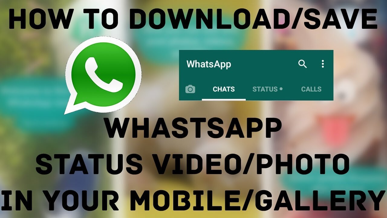 How To Save Whatsapp Status On Your Iphone Aug 2017