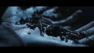 Glass Animals - Black Mambo (Old Video)