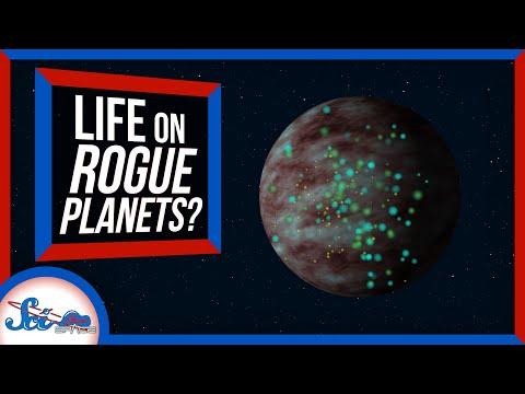 Could Life Survive Without a Star?