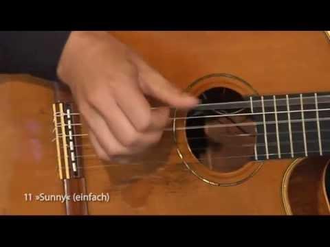 Sunny - Gitarre lernen mit Thomas Fellow