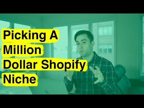 Picking A Million Dollar Shopify Niche (Detailed)