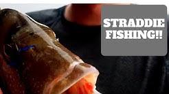 STRADDIE FISHING 2018!!!! - (MASSIVE BREAM AND SWEETLIP!!!!)