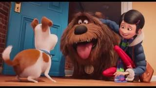 Gambar cover 🎥 The Secret Life of Pets Official 'Snowball' Trailer (2016) - Kevin Hart, Jenny Slate Movie HD