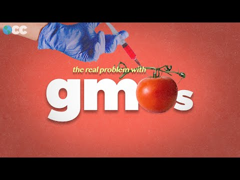 The real problem with GMO Food