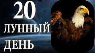 20 ЛУННЫЙ ДЕНЬ. ХАРАКТЕРИСТИКА
