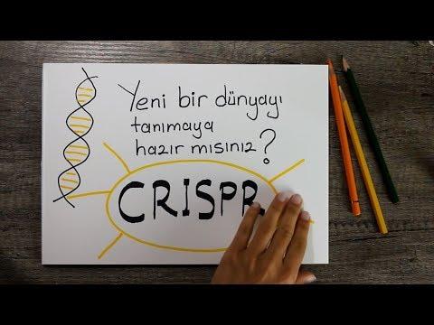 Crispr nedir? Türkçe. En etkili kanser tedavilerinden biri olmaya çalışan CRISPR-CAS9