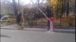 Шлагбаум купить Киев(, 2013-09-06T05:27:24.000Z)